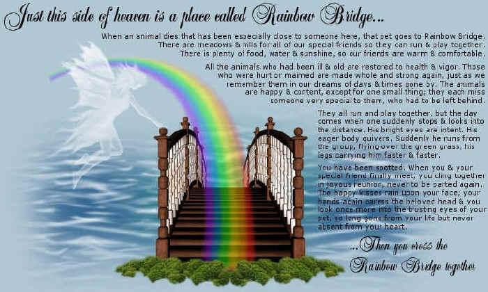 Rainbow_Bridge
